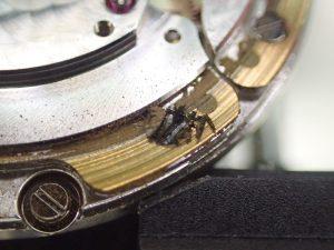 ローター芯が磨滅し、ローター本体が各部の受けと接触し、削ってしまっていました
